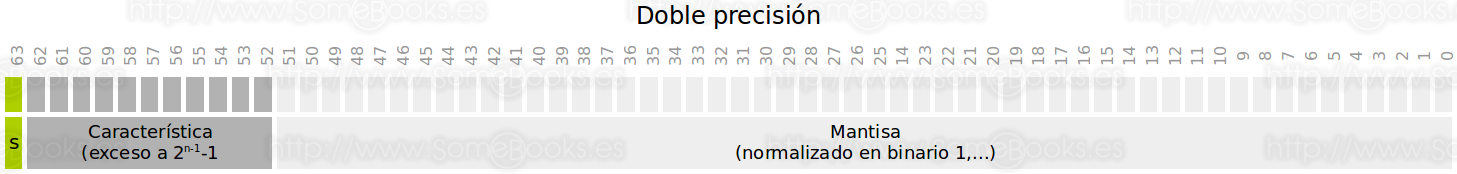 Doble precisión