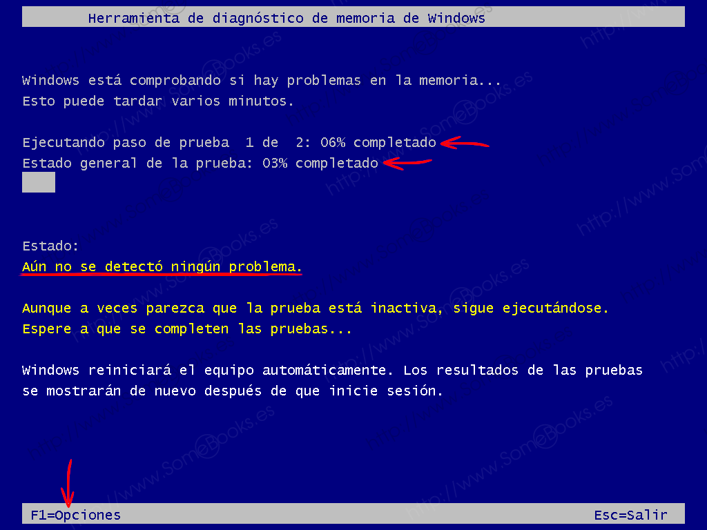 Comprobar-el-estado-de-la-memoria-RAM-usando-Windows-10-007