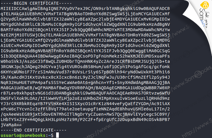 Configurar-Postfix-para-usar-el-SMTP-de-Gmail-en-Ubuntu-1804-LTS-020