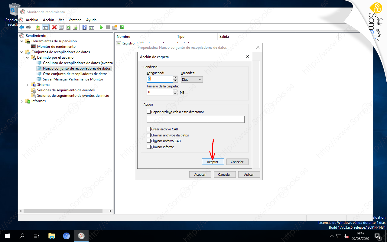 Programar-la-recogida-de-datos-a-partir-de-un-Conjuntos-de-recopiladores-de-datos-en-Windows-Server-2019-011