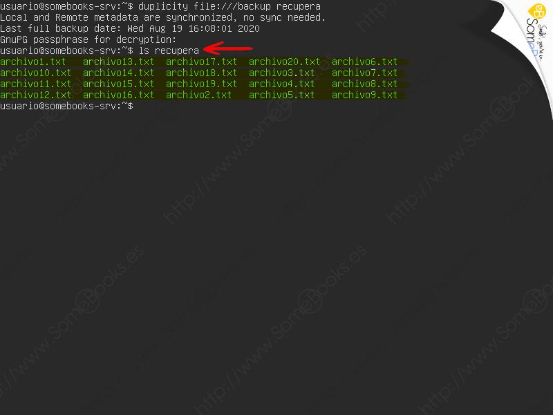 Copias-de-seguridad-en-Ubuntu-Server-20-04-LTS-con-duplicity-Parte-I-025