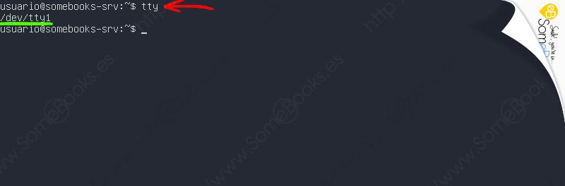 Aplazar-una-tarea-hasta-un-momento-concreto-en-Ubuntu-Server-20-04-LTS-005